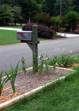 Mailbox bed june 2009 2