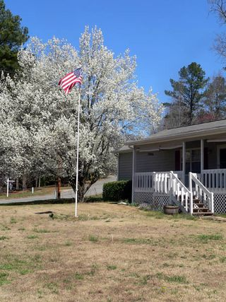 Flagpole and bradford pear